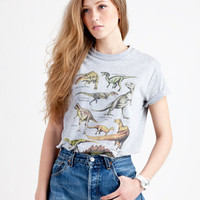 Run &amp; Fly Dinosaurs T-Shirt Grey