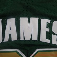 LeBron James 23 Irish High School St. Mary NBA Basketball Jersey Lebron James