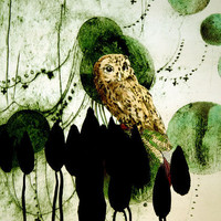 """catOwl"" Drawing art prints and posters by Randi Antonsen   -  ARTFLAKES.COM"