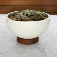 Case Study Ceramic Bowl<br>With Plinth - Large