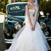 Organza Split Front A-Line with Bodice Detail - David's Bridal