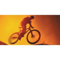 Art 4 Kids Dirt Bike Wall Art - 21505 - All Wall Art - Wall Art &amp; Coverings - Decor