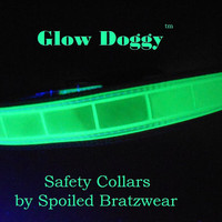Glow in the Dark and Reflective Safety Collar for by hatz4brats