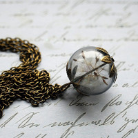 Real Dandelion Necklace 06 Real Dandelion by NaturalPrettyThings