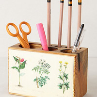 Pine Desk Caddy