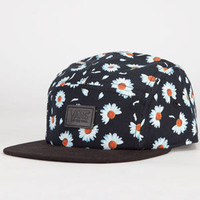 Vans Willa Daisy Camper Womens 5 Panel Hat Black Combo One Size For Women 23413614901
