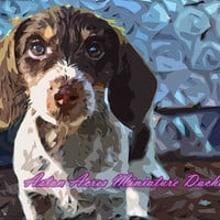 Dachshund Pop Art Print Photography ~ Starry Blue ~A by AstonAcresDachshunds