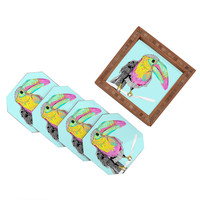 Casey Rogers Toucan Coaster Set