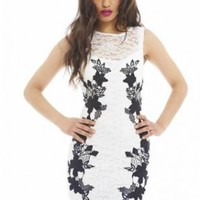 Lace Crochet Contrast Bodycon