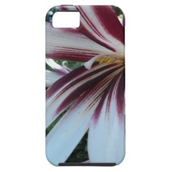 Giant Himalayan Lily Floral iPhone 5 Case