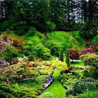 TRAVEL  INTO  WORLD: Butchart Gardens - Beautiful Garden in Canada