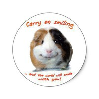 Carry on Smiling! Round Stickers from Zazzle.com