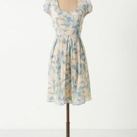 Montserrat Dress - Anthropologie.com