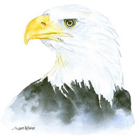 Bald Eagle Watercolor Painting - 5 x 7 - Giclee Print - Fine Art Eagle Painting