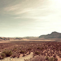 Go west Photography southwest travel mint green desert by Raceytay