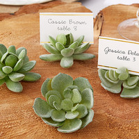 Succulent Place Card Holders (Set of 4)