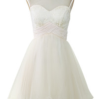 Sweet Heart Embroidered Tulle Dress in Champagne  Beige
