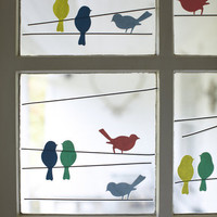 Bird Window Stickers - NEW ? Cox &amp; Cox, the difference between house and home.
