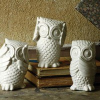 hear no, see no, speak no owls \ white