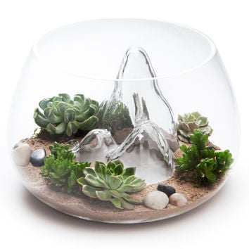 Underwater Landscape Fish Bowl