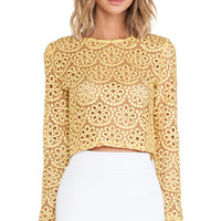 Laiden Lace Crop Top in Floral Amber