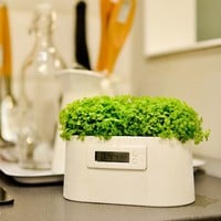Mini Plant Power Station Clock