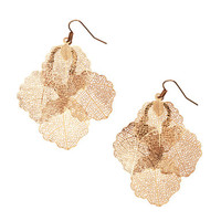 H&M Leaf-shaped Earrings $5.95