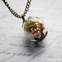 Woodland Treasure Necklace 05 Real Moss by NaturalPrettyThings