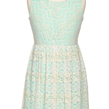Roxette Floral Lace Skater Dress (Big Girls)