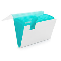 White + Aqua Accordion File