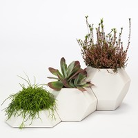 MONOQI | Ma-Ce-Ta Set of 3 Planters