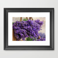 Lavender Framed Art Print by Aubergine & Purple