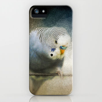 The Budgie Collection - Budgie 3 iPhone & iPod Case by Jai Johnson