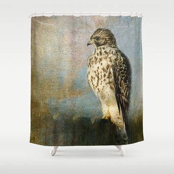 On The Fence - Juvenile Red Shouldered Hawk Shower Curtain by Jai Johnson