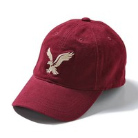 AEO FACTORY SIGNATURE FITTED BASEBALL CAP