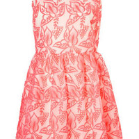 Embroidered Organza  Dress - Dresses  - Clothing  - Topshop