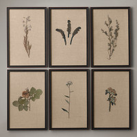 Hand-Pressed Botanicals on Linen Ivory
