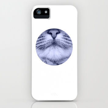 cats details blue iPhone & iPod Case by Steffi ~ findsFUNDSTUECKE