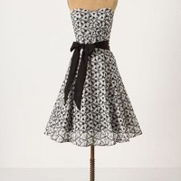 Overwhelmed Aster Dress-Anthropologie.com