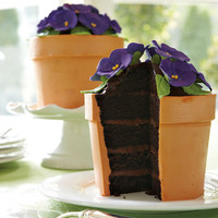 The Green Head - Blooming Flower Pot Cake