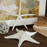 Faux White Starfish