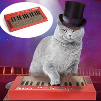 CAT-IO CAT KEYBOARD SCRATCHER