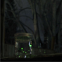 DIY Jar of Fireflies