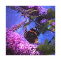 Fantasy Red Admiral Butterfly Art on Wrapped Canvas