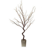 Z Gallerie - Stick Tree - Brown