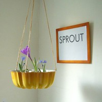 Spring Splendor Summer Squash Yellow Hanging Fresh by BootsNGus