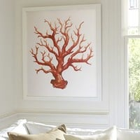 RED BRANCH CORAL FRAMED PRINT