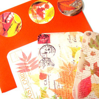 Autumn Leaves Flat Cards Set of 3 Cards Stickers And Envelopes Set 2