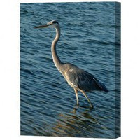Menaul Fine Art Heron Limited Edition Canvas - Scott J. Menaul - PHO-016 - All Wall Art - Wall Art & Coverings - Decor