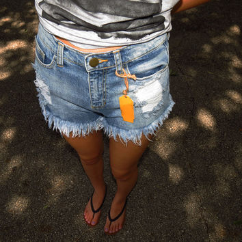 Shorts, High Waisted Shorts, Denim Shorts, Distressed Shorts | Nothing Too Wear